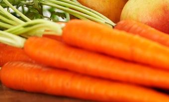 Porkkanamaa