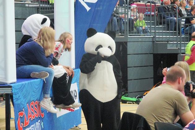 Pandat ovat tuttu näky Classicin peleissä.