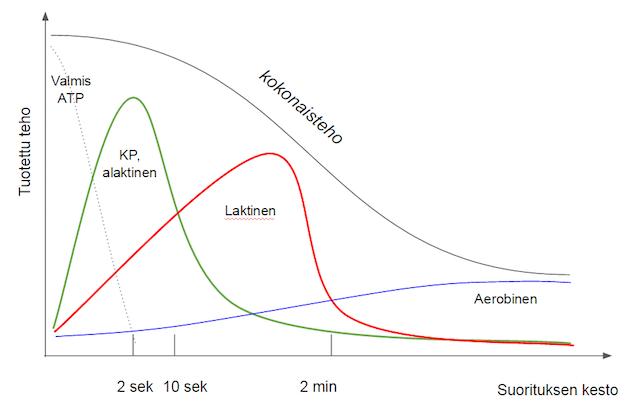 Kuva 3: Kuvaajassa on esitetty suuntaa antavasti eri energiasysteemien osuudet kokonaistehosta yksittäisessä kovan (>90%) intensiteetin suorituksessa